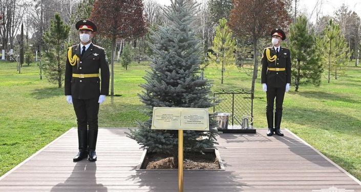 Президенты Кыргызстана и Узбекистана Садыр Жапаров Шавкат Мирзиёев посадили дерево в резиденции Куксарой в Ташкенте