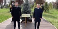 Президент Садыр Жапаров менен Шавкат Мирзиёев бак тигишти