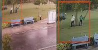 В Индии молния поразила людей, прятавшихся от дождя под деревом. В результате случившегося один скончался, остальные в больнице в тяжелом состоянии.