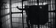 Мужчина за решеткой в тюрьме. Иллюстративное фото