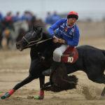 Игрок Ынтымака Нуржан Мелисбек уулу завладел тушей и мчится к тай-казану, чтобы заработать салым (очко) для своей команды. Конь спортсмена — Кара Куш.