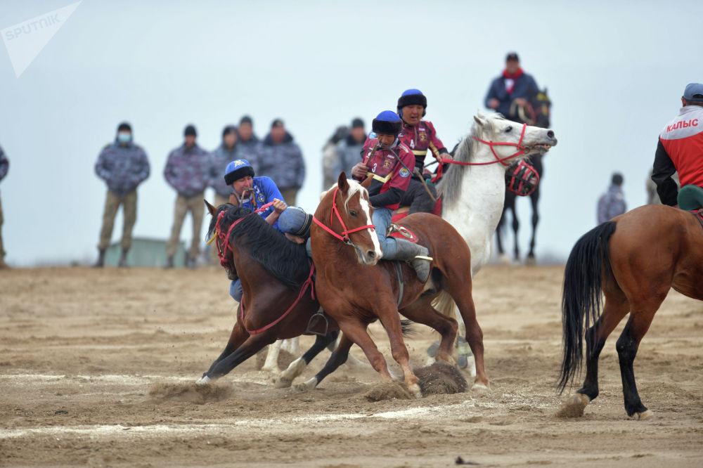 Лошадей специально обучают для жекеме-жеке — встречи двух всадников в круге. На фото можно увидеть, как лошади помогают своим наездникам поднять тушу козла.