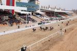 В Чолпон-Ате накануне, 21 марта, в рамках конноспортивных игр, приуроченных к празднованию Нооруза прошли конные скачки. Участники соревновались на различные дистанции в кунан чабыш, аламан байге и жорго салыш.