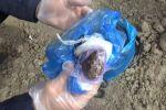 Задержание торговцев наркотиками в Кара-Суйском районе