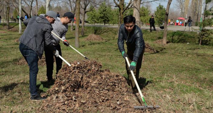 Руководители и сотрудники Аппарата президента на субботнике на территории парка Победы им. Дайыра Асанова в Бишкеке