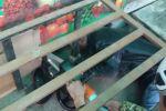 ӨКМ контейнерге башы тыгылып калган жаранга жардам берди