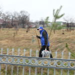 Акциянын алкагында ыктыярчылар Кызыл-Аскер советтик жоокерлердин жалпы көрүстөнүнө 80 түп дарак көчөтүн отургузушту