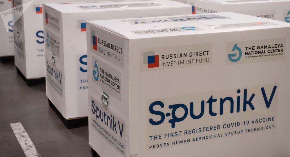 Груз с российской вакциной Sputnik V от коронавирусной инфекции covid-19. Архивное фото