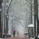 Люди идут по бульвару Эркиндик во время апрельской снежной бури в Бишкеке