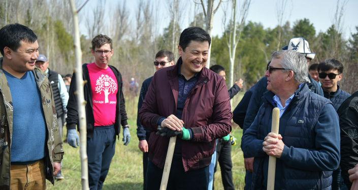 Премьер-министр Кыргызстана Улукбек Марипов во время высадки деревьев с представителями бизнеса и IT— компаний