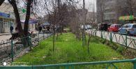 Ордо калаада Юнусалиев — Сухэ-Батор көчөлөрүнүн кесилишинде жакын арада жашыл зона пайда болот