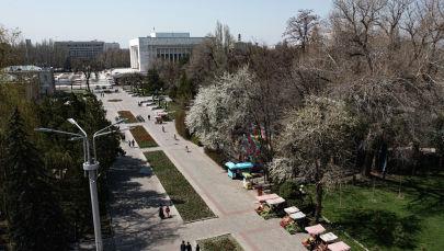 Люди гуляют в дубовом парке Бишкека в теплую погоду