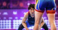 Кыргызстандык балбан кыз Айсулуу Тыныбекова күрөш боюнча Алматыда өткөн Азия чемпионатын жеңип, төтүңчү ирет Азия чемпиону болду. Финалда ал монгол кызын 11:0 эсебинде таза артыкчылык менен утту