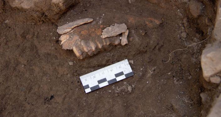 Один их археологических находок доцента АУЦА Аиды Абдыкановой