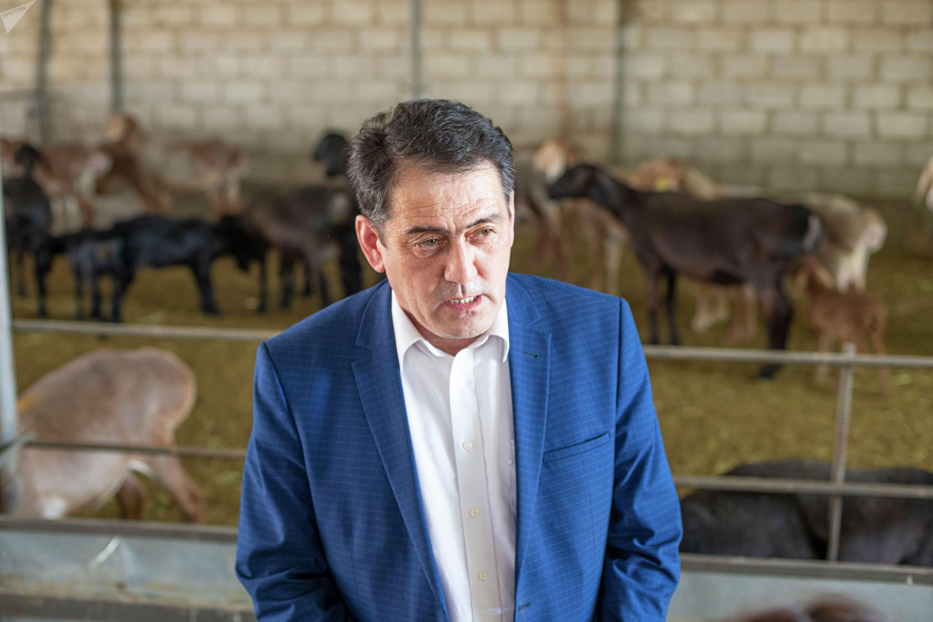 Заведующий отделом разведения и селекции овец и коз Кыргызского НИИ животноводства и пастбищ Рахатбек Ибраев