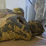 Ранее считалось, что останки принадлежат мужчине-жрецу по имени Гор-Джехути. Однако радиологическая экспертиза показала, что это останки женщины.