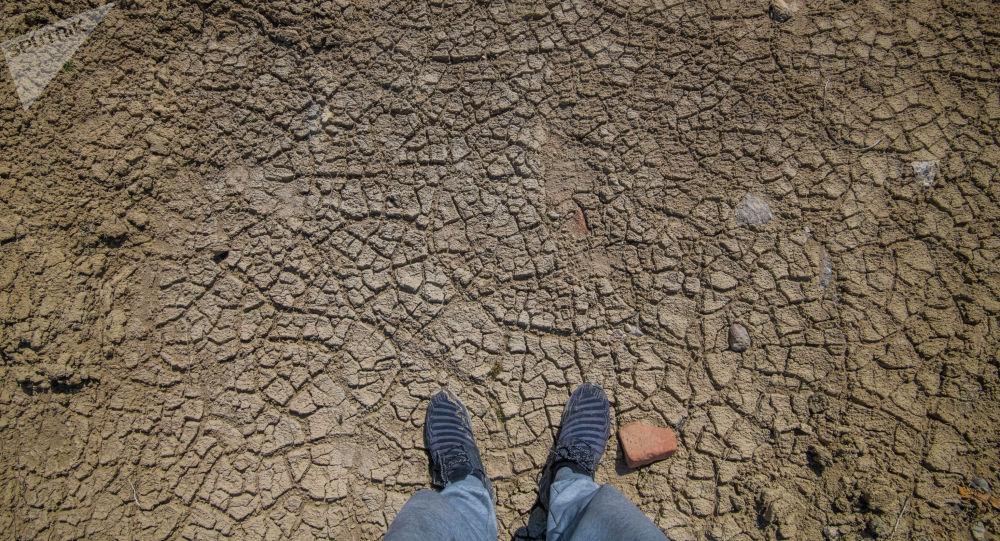Высушенная земля. Архивное фото
