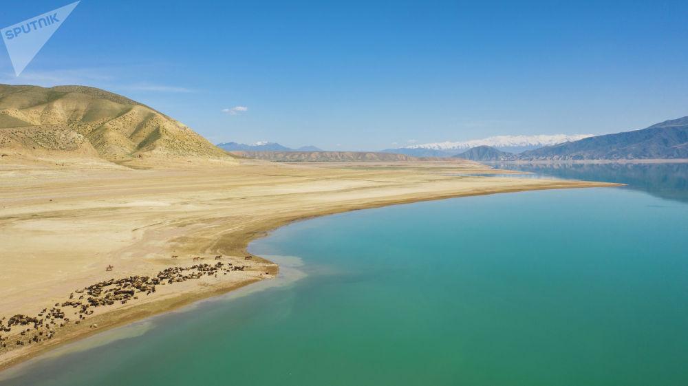 По словам местных жителей, обычно к концу зимы уровень  воды достигал подножия холмов