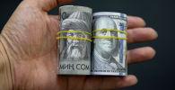 Доллар жана сом акчалары. Архивдик сүрөт