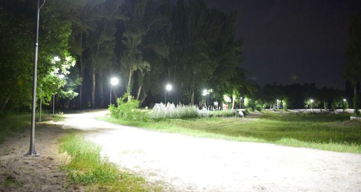 Муниципальное предприятие Бишкексвет установили фонари освещения в Карагачевой роще на окраине Бишкека