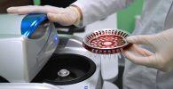 Лаборант научного центра проводит ПЦР-анализ на ВИЧ-инфекцию. Архивное фото