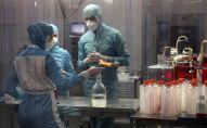 Сотрудники лаборатории во время разработки иммунобиологических препаратов. Архивное фото