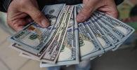 Мужчина демонстрирует доллары США. Архивное фото