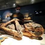 Одна из мумий в новом музее в международном аэропорту Каира (Египет)