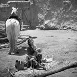 Короодо баласын киринткен Уркуя. Кинокартинага Таттыбүбү Турсунбаеванын кичинекей уулу Канат да тартылган
