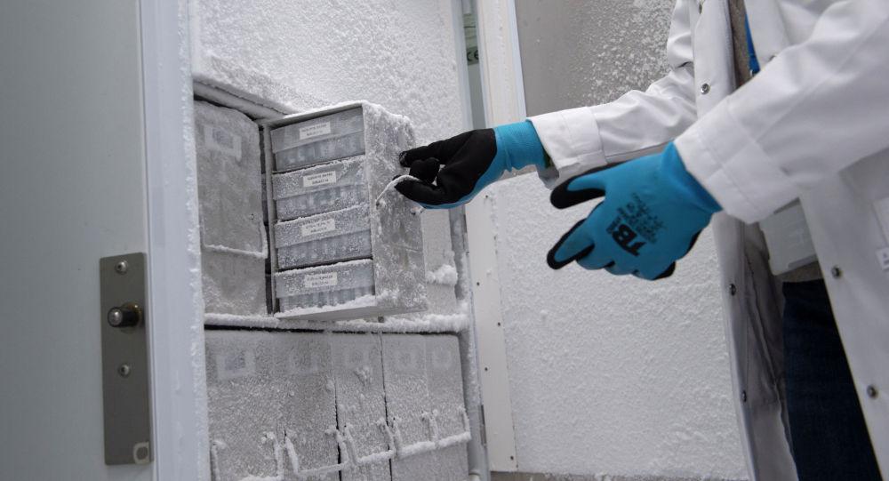 Сотрудник лаборатории открывает морозильную камеру. Архивное фото