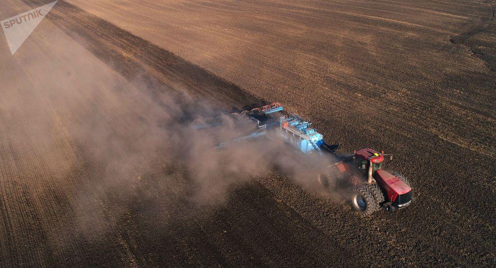 Посевной техника сеет пшеницу на полях. Архивное фото
