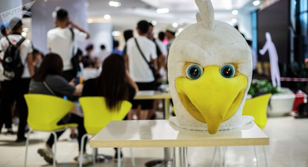 Талисман сборной Кыргызстана по футболу — птица Ак шумкар
