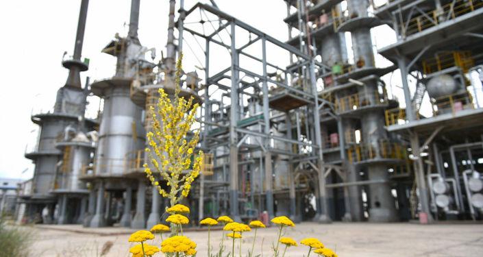Деятельность нефтеперерабатывающего завода Джунда