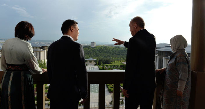Президент Садыр Жапаров и президент Турции Реджеп Тайип Эрдоган в рамках официального визита в Турцию.