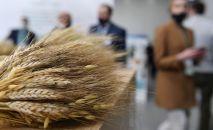 Агротехнологическая выставка ТатАгроЭкспо в Международном выставочном центре Казань Экспо в Татарстане.