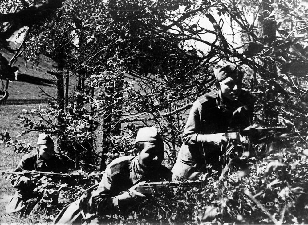 Автоматчандар взводунун командири И. М. Сагало кызыл аскерлери Асылбеков жана Чайка менен буктурмада жашынып жаткан учур. 1943-жыл.  1943-жылы Кызыл армия Сталинград шаарында жана Курск догосундагы салгылаштарда вермахтты талкалайт. Бул салгылашуулар Экинчи дүйнөлүк согуштун жүрүшүнө абдан зор таасирин тийгизген. Андан кийин фашисттик Германия чабуул койгонго чамасы жетпей коргонууга аргасыз болгон.