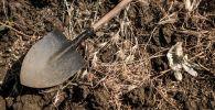 Лопата и одноразовые перчатки на земле. Архивное фото