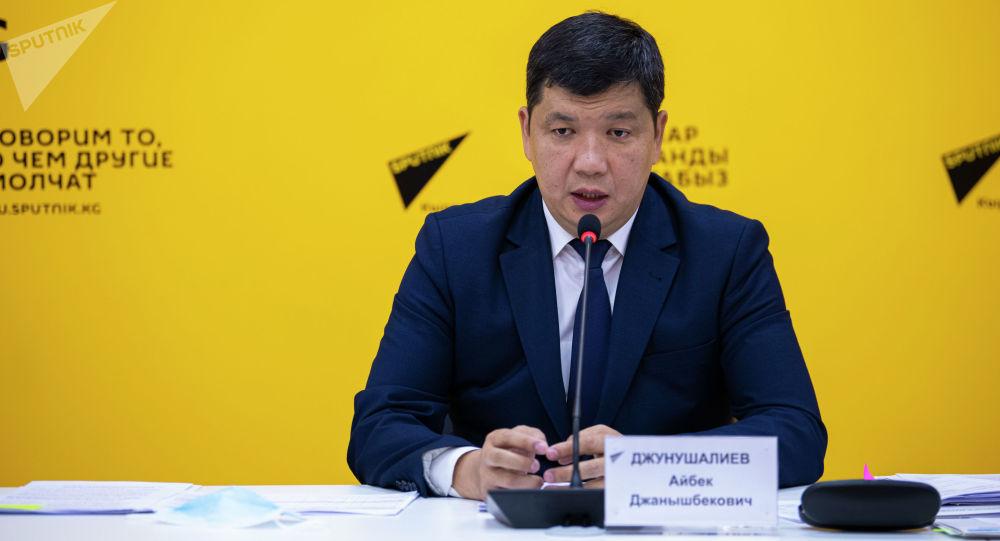 Министрлер кабинетинин төрагасынын биринчи орун басары Жунушалиев. Архивдик сүрөт