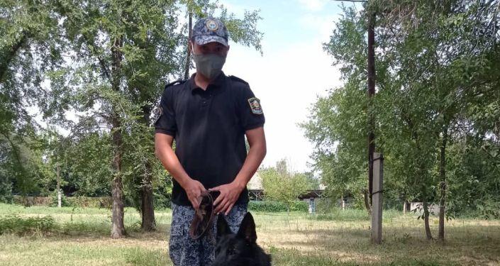 Служебная собака по кличке Хьюга, которая помогла выявить наркопритон в одном из бишкекских квартир.