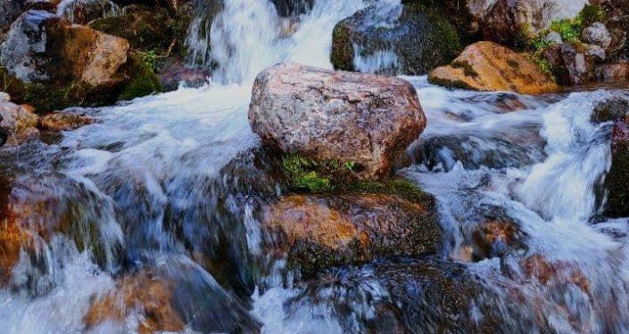 Река на пастбище Сары-Ой в Алайском районе, которое стало местом внутреннего туризма в Ошской области