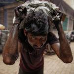 Индиянын Праяградже базарында жүк көтөрүп иштеген киши