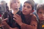 Афганистандын Кандагар шаарынын тургундары тынч жашоосун таштап, бүлгүнгө учурап, жер которууга аргасыз. Алардын арасында бейкүнөө көздөрү менен чоңдорду суроолуу караган бөбөктөр да арбын.