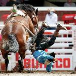 Лошадь сбрасывает наездника во время родео в Калгари (Канада)