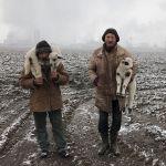 Снимок Трансильванские овчарки фотографа из Венгрии Istvan Kerekes получил гран-при конкурса