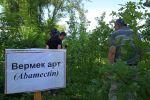 Бишкекте курт жеген эмен бактарын дарылоо үчүн изилдөө жүргүзүлүп, препараттардын натыйжасы текшерилди