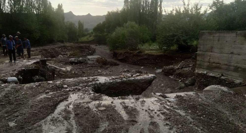 Из-за проливных дождей в нескольких селах Баткенской области сошли селевые потоки