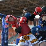 Белгилей кетсек, самбо менен тай бокс быйыл Олимпиада оюндарынын катарына кирди