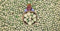 Фотография Счастливый фермер Рафида Ясара из Бангладеша признана лучшим снимком на международном конкурсе фотожурналистики имени Андрея Стенина
