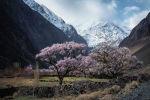 Кыргызстанга саякат: келген турист кайда, канчага жана кантип эс алса болот