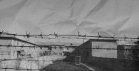 Темир тор артындагы өлүм: Кыргызстанда абактарда кантип дарылашат